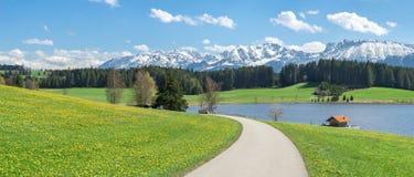 Prato del fiore e della strada al lago ed alle montagne innevate Fotografia Stock