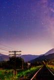 Prato del fiore nelle alpi al tramonto Fotografia Stock