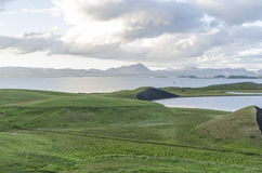 Prato dell'Islanda di estate Immagini Stock Libere da Diritti