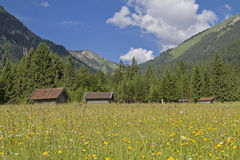 Prato della montagna con le capanne del fieno Fotografia Stock Libera da Diritti