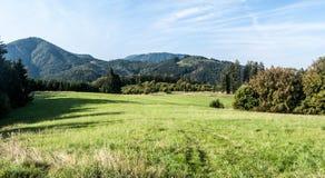 Prato della montagna con le colline ed il cielo blu in montagne di Velka Fatra Immagine Stock Libera da Diritti
