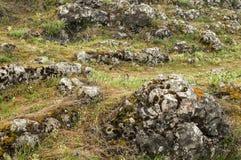 Prato della montagna con le rocce Immagine Stock Libera da Diritti