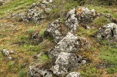 Prato della montagna con le rocce Fotografia Stock Libera da Diritti