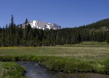 Prato della montagna con un flusso contro cielo blu Fotografia Stock