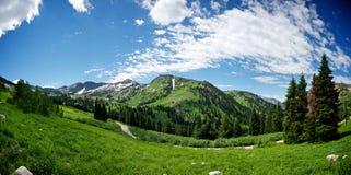 Prato della montagna del Alta Utah Fotografia Stock Libera da Diritti
