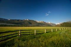 Prato della montagna nel Wyoming del Nord Fotografie Stock