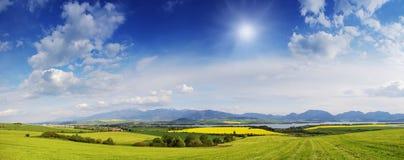 Prato della primavera in montagne Fotografie Stock