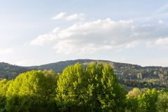 Prato della primavera in montagne Paesaggio alpino luminoso con cielo blu Nuvole bianche e sole luminoso in cielo blu Fotografie Stock