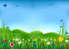 Prato di fioritura royalty illustrazione gratis