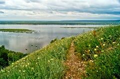 Prato di fioritura sulla banca del fiume Volga. Fotografia Stock