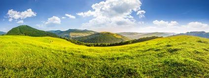 Prato di Hillside in alte montagne immagine stock libera da diritti