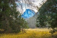 Prato di mattina con gli strati degli alberi e di mezza montagna della cupola in sedere Fotografia Stock Libera da Diritti