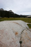 Prato di Tuolumne - Yosemite Immagine Stock