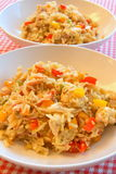 Prato do arroz da galinha Imagens de Stock Royalty Free