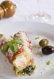 Prato do cannelloni Imagem de Stock Royalty Free