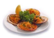 Prato dos moluscos Fotografia de Stock