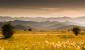 Prato e colline Immagini Stock Libere da Diritti