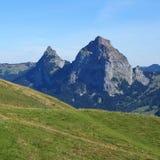 Prato e supporto verdi Mythen, alpi svizzere Fotografia Stock
