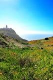 Prato edulis del Carpobrotus che circonda il faro di Cabo da Roca nel Portogallo fotografia stock libera da diritti