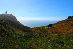 Prato edulis del Carpobrotus che circonda il faro di Cabo da Roca nel Portogallo fotografia stock
