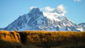 Prato giallo con il picco di montagna sull'aumento di Torres del Paine nella Patagonia, Cile dell'erba immagini stock