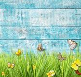 Prato idilliaco della molla con le farfalle con le vecchie plance di legno sopra Immagini Stock