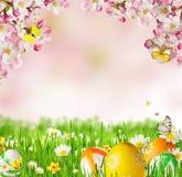 Prato idilliaco della molla con le uova di Pasqua e le farfalle con i blos Immagine Stock