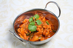 Prato indiano do caril da galinha Imagem de Stock