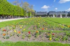 Prato inglese con i fiori nel giardino del Tuileries Parigi, Francia Fotografia Stock