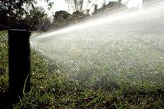 Prato inglese d'innaffiatura automatico dell'impianto di irrigazione del giardino Fotografia Stock