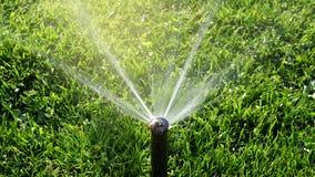 Prato inglese d'innaffiatura dello spruzzatore dell'acqua del giardino immagine stock