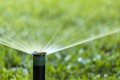 Prato inglese d'innaffiatura dello spruzzo dell'impianto di irrigazione del giardino Fotografie Stock Libere da Diritti