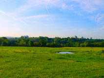 Prato inglese del campo di estate con le costruzioni Fotografia Stock Libera da Diritti