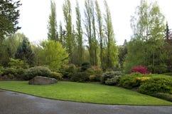 Prato inglese del giardino dopo la pioggia di molla Fotografie Stock