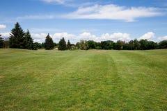 Prato inglese dell'erba verde Fotografia Stock