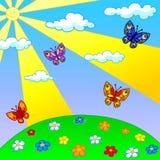 Prato inglese di estate con le farfalle ed i fiori Fotografia Stock