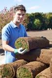 Prato inglese di Laying Turf For del giardiniere di paesaggio nuovo fotografia stock libera da diritti