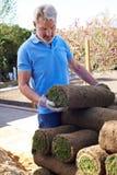 Prato inglese di Laying Turf For del giardiniere di paesaggio nuovo fotografie stock
