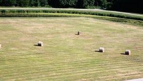 prato inglese governato con le balle dell'erba in Val de Loire Immagine Stock Libera da Diritti
