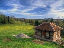 Prato inglese in primavera Fotografia Stock