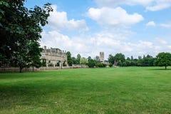 Prato inglese verde con la città universitaria di università di Cambridge fotografie stock libere da diritti
