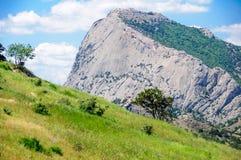 Prato inglese verde contro l'alta roccia ed il cielo blu con le nuvole Fotografia Stock