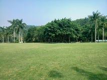 Prato inglese verde nel giardino botanico di xianhu Fotografia Stock