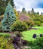 Prato inglese verde in un parco decorato con gli alberi intorno fotografia stock
