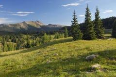 Prato in montagne di San Juan in Colorado Immagine Stock