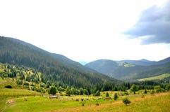 Prato nelle montagne immagini stock