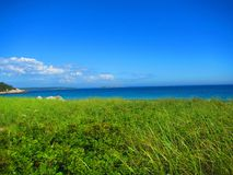 Prato o campo con una vista di oceano Fotografia Stock