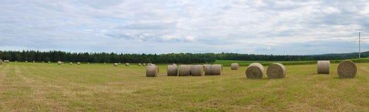 Prato panoramico del paesaggio rurale di agricoltura dell'azienda agricola del giacimento della balla di fieno Fotografie Stock Libere da Diritti