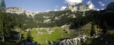 Prato Planina V Lazu della montagna nelle alpi di Julian Fotografie Stock Libere da Diritti