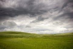 Prato prima della tempesta Fotografia Stock